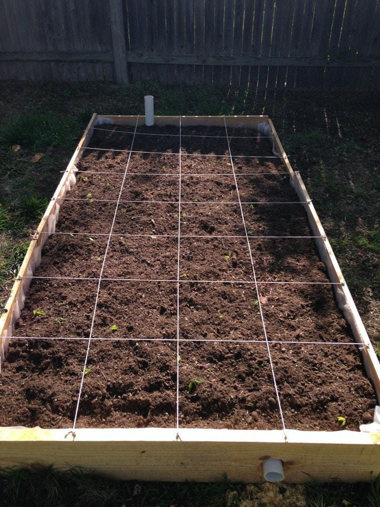 Square Foot Grid on Wicking Bed in Garden