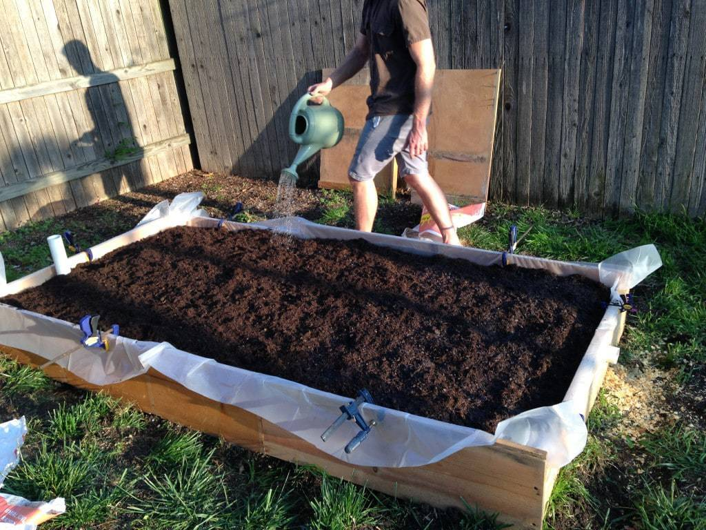 Hand Watering Soil in Wicking Bed
