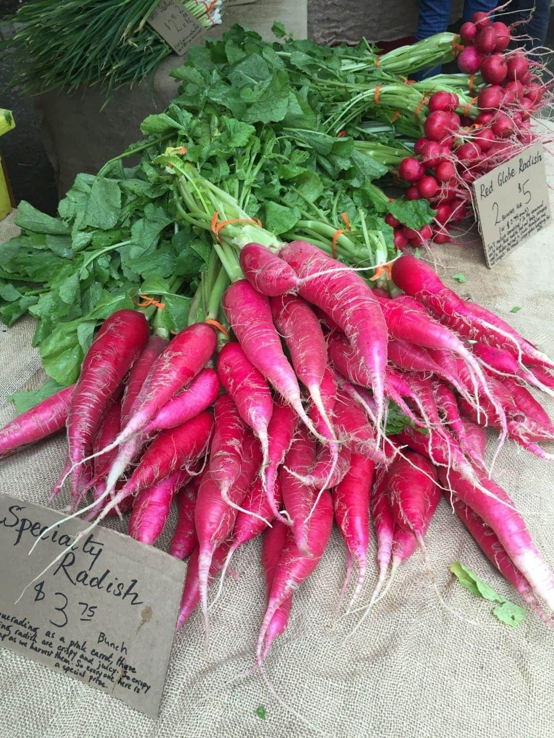 Bright Pink Radishes on Sale at Farmers' Market