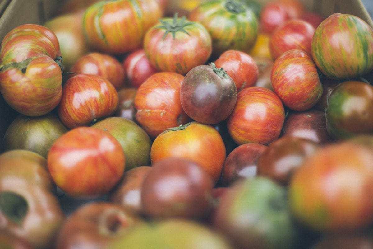 Tomato Varieties Whole Foods Plants