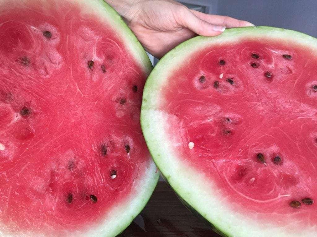 Ripen Your Fruit