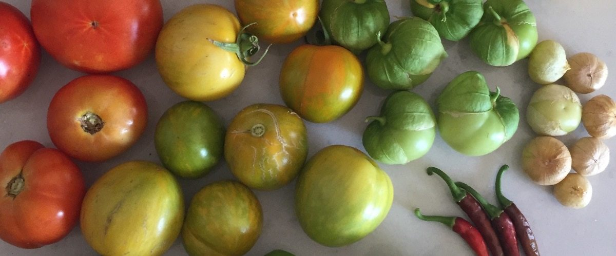 Nightshades: tomatoes, tomatillos and peppers on kitchen counter