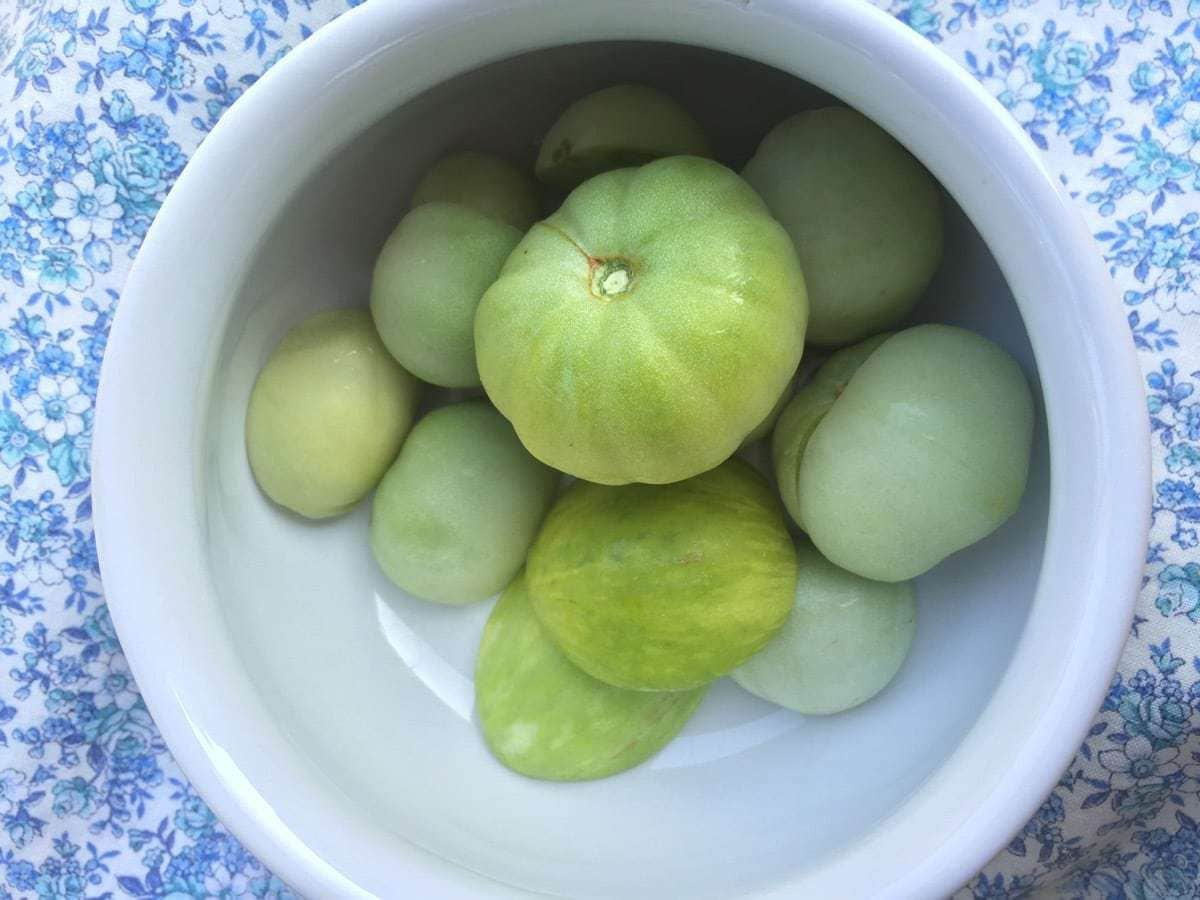 Unripe Tomatoes in Bowl